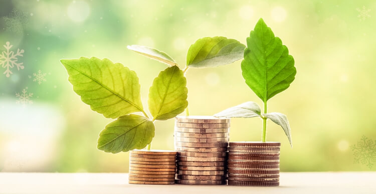 An image of a stack of coins with sprouting leaves